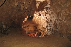 Blätterhöhle 1-2