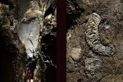 Kluterhöhle 1-9 (Foto: Philippe Crochet)