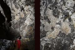 Kluterhöhle 1-8 (Foto: Philippe Crochet)