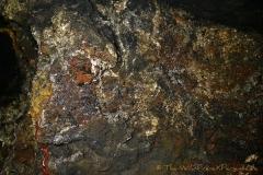 Schlosshöhle 1-22 (Foto: Wildfire)