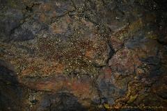 Schlosshöhle 1-20 (Foto: Wildfire)